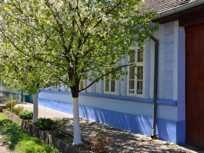 Kuća u Bačkom Petrovcu
